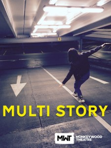 Multi Story image